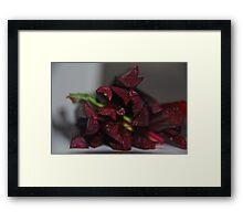 Beetroot Stalks Framed Print