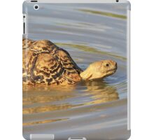 Tortoise Summer Swim - Natural Fun iPad Case/Skin