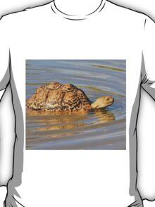 Tortoise Summer Swim - Natural Fun T-Shirt