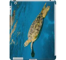 Beautiful Adult Male Green Turtle iPad Case/Skin