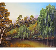 Weeping Willow Creek Photographic Print