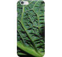 Winter Cabbage iPhone Case/Skin