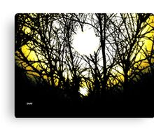 Ascent of the Firefly Canvas Print