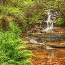 Mini Cascades at Leura by Michael Matthews