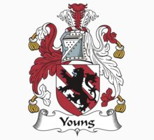 Young Coat of Arms (Kildare, Ireland) by coatsofarms
