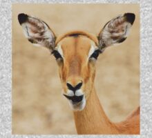 Impala Fun - Wildlife Humor from Africa.  Kids Clothes