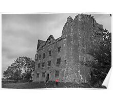 Lemaneagh Castle, The Burren, Ireland Poster