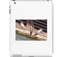Stop being silly iPad Case/Skin