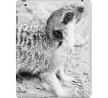 Monochrome Suricate iPad Case/Skin