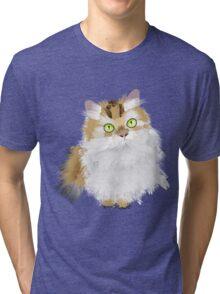Cute Fluffy Cat Tri-blend T-Shirt