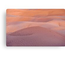 Earth Bodyscape.  Natural Abstract  Canvas Print