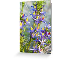 Blue Tinsel Lily Greeting Card