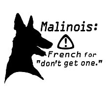 Malinois. Just... don't.  Photographic Print