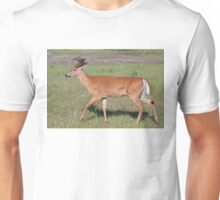 White-tailed deer with velvet antlers in spring Unisex T-Shirt