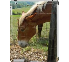 Grazing Brown Beauty    ^ iPad Case/Skin