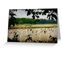 Old Woman Creek - Natural Framing Greeting Card