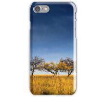 yellowed tree in a field under a dark autumn sky iPhone Case/Skin