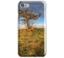 autumn wild rose and stone on a yellowed hill iPhone Case/Skin