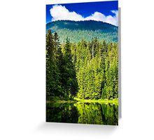 freshness near forest Greeting Card