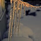 Icicles at Sunset by Barry Doherty