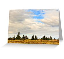 high wild plants at the mountain top Greeting Card