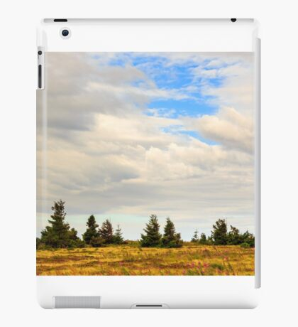 high wild plants at the mountain top iPad Case/Skin