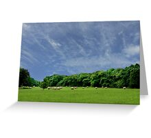 Bales of Hay, Green Fields and Blue Skies - Brittany Country side Greeting Card