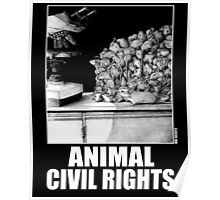Animal Civil Rights (mice) Poster