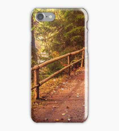 footpath in autumn coniferous forest iPhone Case/Skin