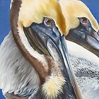 A Portrait Of Two Pelicans by Phyllis Beiser