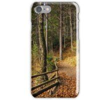 forest walks in autumn iPhone Case/Skin