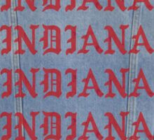 indiana jacket Sticker