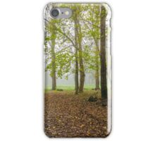 cold fog in autumn forest iPhone Case/Skin