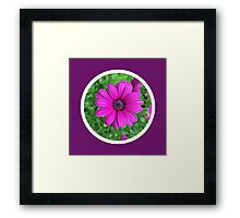 Bright Purple Flower Circle Design Framed Print