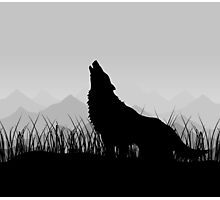 Wolf in mountains Photographic Print