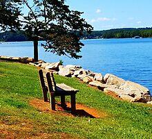 Pleasant Meditation by Lisa Taylor