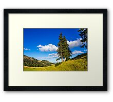 Conifer forest in classic Carpathian mountain Autumn Landscape Framed Print