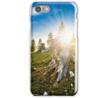 coniferous forest on a hillside in foggy mountains at sunset iPhone Case/Skin