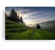 fir trees on meadow between hillsides in fog before sunrise Canvas Print