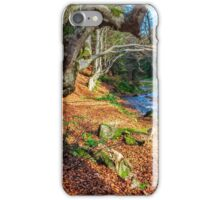 Mountain stream in autumn forest iPhone Case/Skin