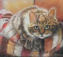 Cat Art - Cute Cat looking at you by AlessandraArt