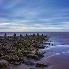 Ocean Stroll by Ian Mitchell