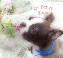 Feel Better Soon ~ Boston Terrier Greeting Card by Susan Werby
