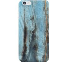 Artotem III - oil painting iPhone Case/Skin
