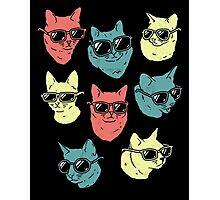 Cat Shirt Photographic Print