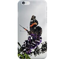 Vanessa - The High Admiral iPhone Case/Skin