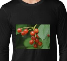 Bright Red Berries........... Long Sleeve T-Shirt