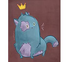 Royal Kitty Photographic Print