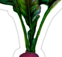 Rooted: The Radish Sticker