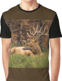 REGAL REST Graphic T-Shirt